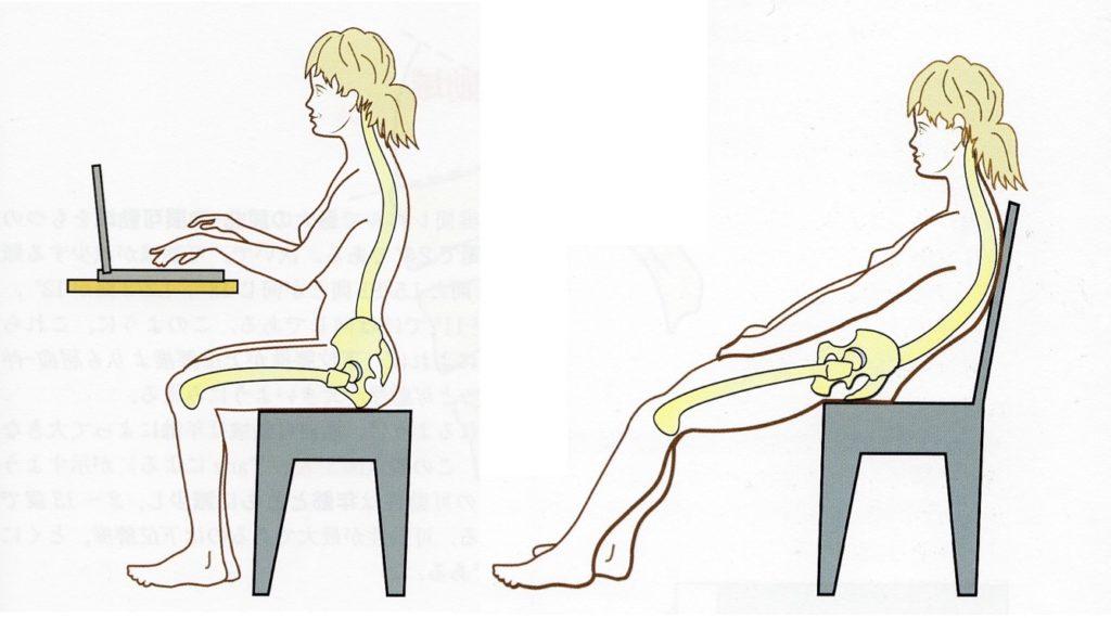 座り姿勢のメカニズム