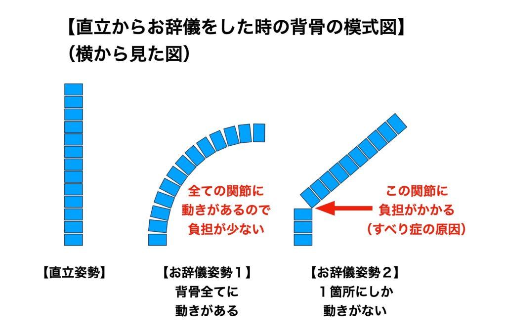 腰椎屈曲の際背骨にかかる負荷の割合